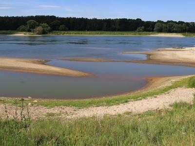 Elbe bei Niedrigwasser [(c) Sabine Schumann]